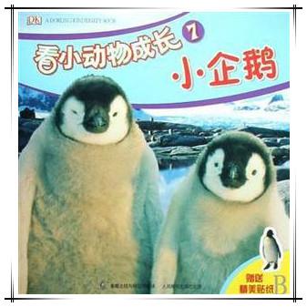 看小动物成长7 小企鹅
