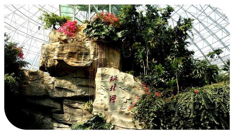 大连森林动物园熊猫馆 热带雨林馆