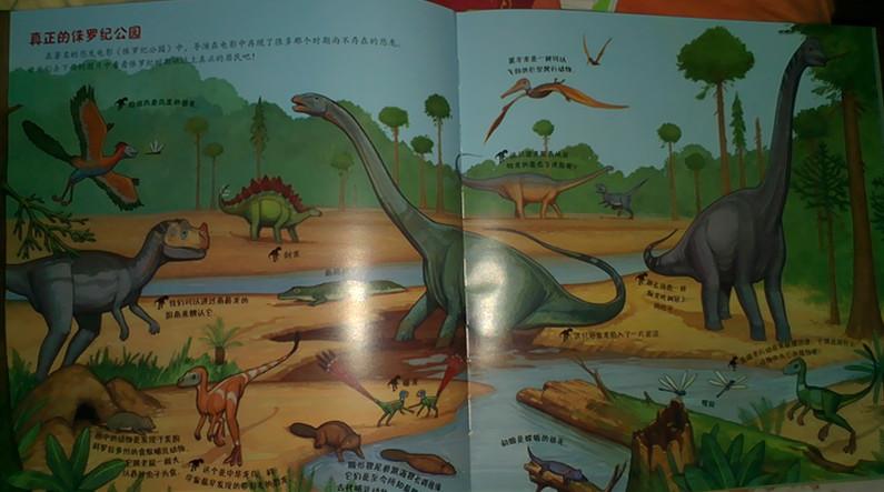 跟随恐龙足迹,探寻远古时代 读 我的第一次恐龙大发现儿童地图绘本