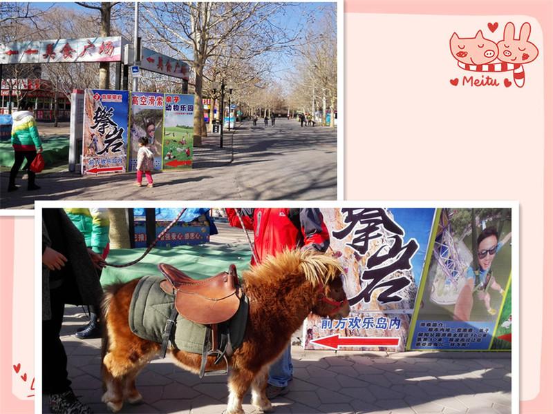 首页 育儿论坛 线下活动 亲子游 欢乐岛动物园喂小动物