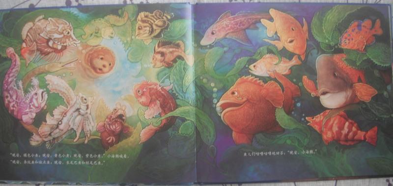 其实还有其他的海洋动物和植物