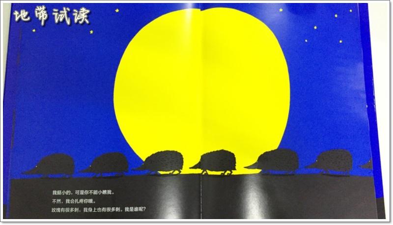 谁叫醒了月亮 影子的魅力