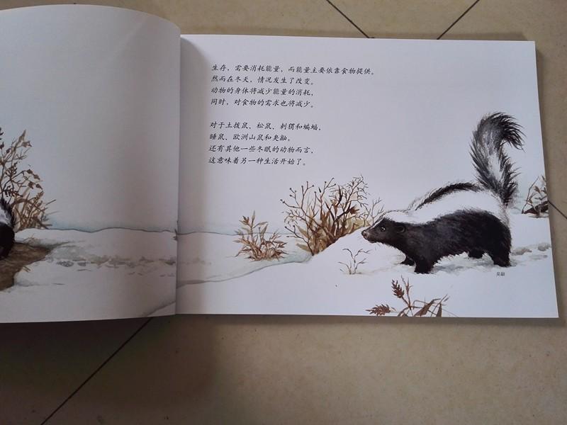 万物的秘密 之冬眠的动物阅读心得