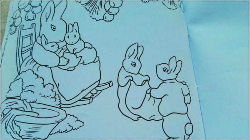 在梦境里跟彼得兔相遇 《彼得兔睡前故事宝盒》赏析 文/全心爱 倍感欣慰,两个孩子都很喜欢阅读,除了在家里营造良好的读书氛围以外,我花费了很多的时间和精力给孩子们选书也是有利因素之一。几期的悦读会,去了好几个桐同学的家里,看过了他们家里的书房、书架和藏书以后,有了很深的感触:多数孩子的家中书籍的数量较少,而且多数都是经典书籍,很多都是口碑较好,而且宣传力度较大的书。在回到自己家中,好好看看几个书架的书,孩子们阅读倒是涉猎颇广,但是仔细找来,所谓经典书籍,著名书籍却比较少,究其原因:我从来对经典书籍都不感冒