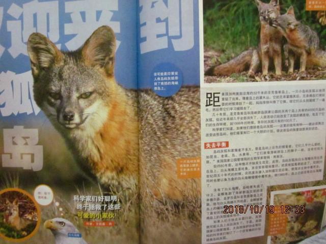 《环球少年地理》 离奇而又真实的动物世界