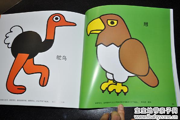 这次非常幸运的获得了《聪明宝宝益智绘本》的试读,非常感谢中国城市出版社和宝宝地带带给我们这么好的礼物!《聪明宝宝益智绘本》共五本,包括《世界国旗绘本》、《交通工具绘本》、《数字绘本》、《动物绘本》、《ABC》。我得到的绘本是《动物绘本》,里面有很多的小动物,可以让孩子和我一起学习动物的有关知识,增加亲子阅读的趣味性。收到书的时候,我有点吃惊,从来没有见过这么厚厚的一本,足足有95页之多,实在是太惊喜了!