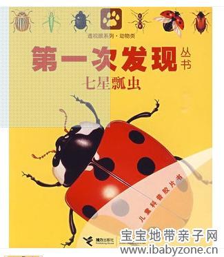 郑好总看动物世界,其中有一次动物世界讲的就是瓢虫