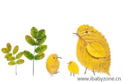 每到秋天,缤纷的落叶簌簌掉落,宣告着树叶的生命开始凋零.