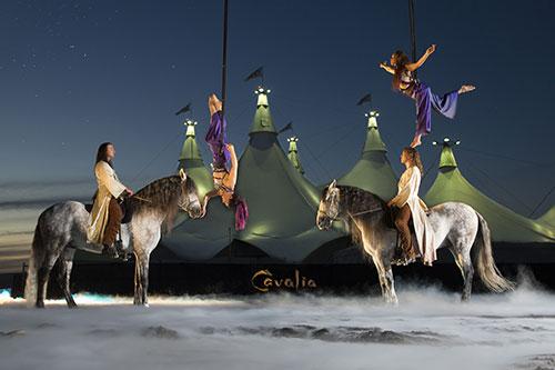 《Cavalia·舞马》演出现场
