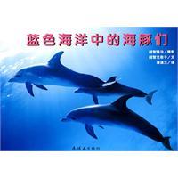 蓝色海洋中的海豚们