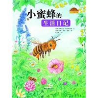 小蜜蜂的生活日记