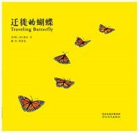 迁徙的蝴蝶