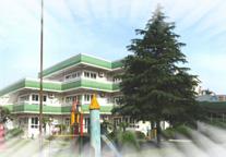 长桥第三幼儿园