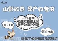 【第1414期试吃】《咕咕蛋》(0124—0128)