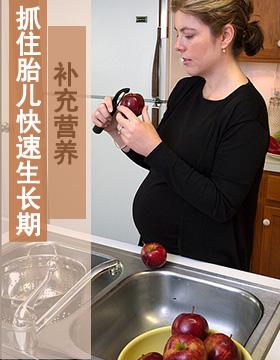 抓住胎儿快速生长期补充营养