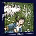 【试读】《小雪豹:雪山上的朋友》